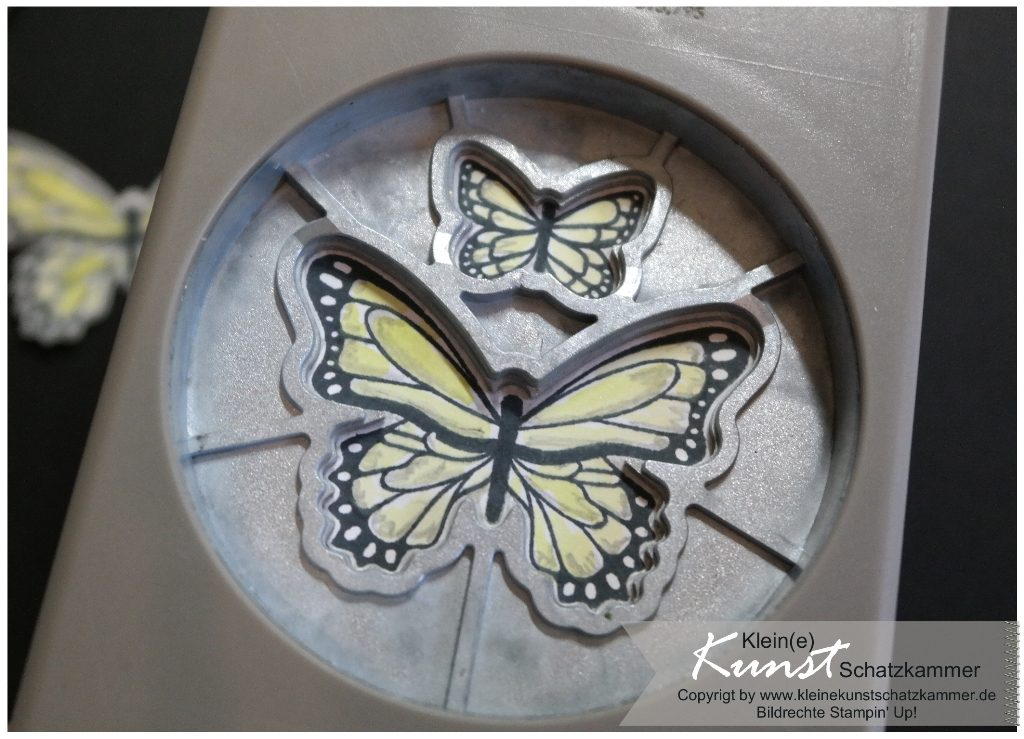 StampinUp Schmetterlingsglück Schmetterling butterfly circle card Stanze